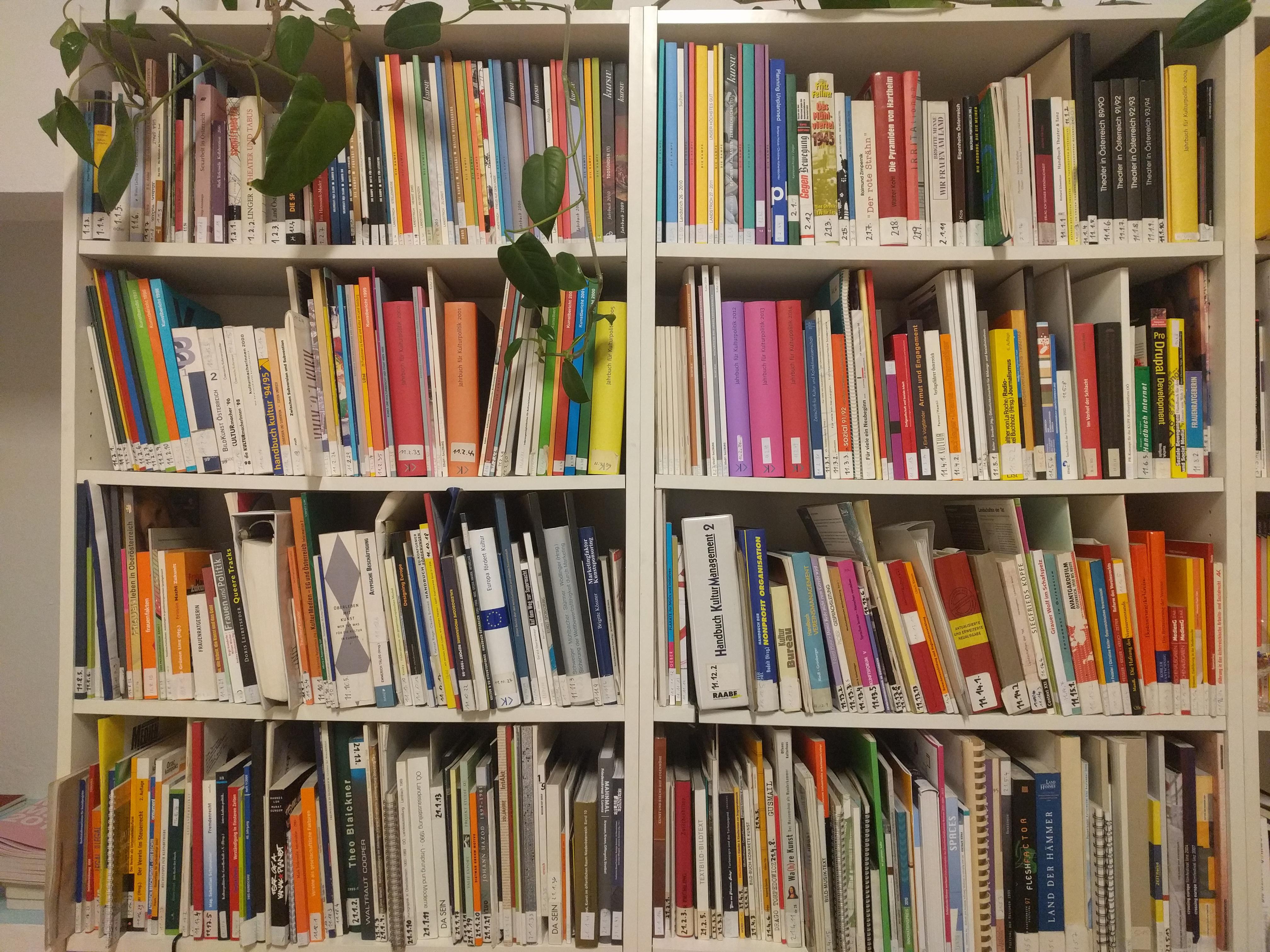 KUPF Bibliothek 1.jpg