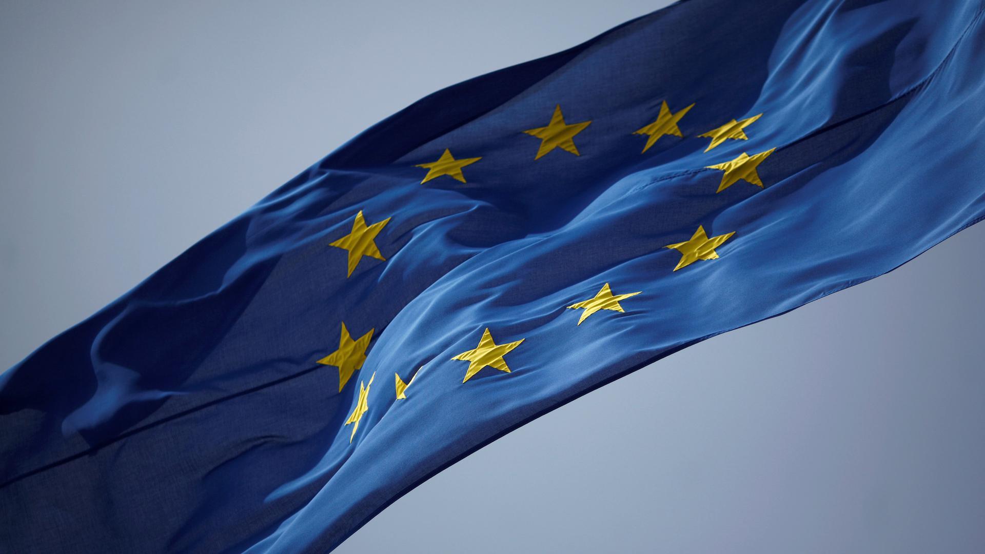 eu-fahne-berlin-direkt-1001920x1080.jpg