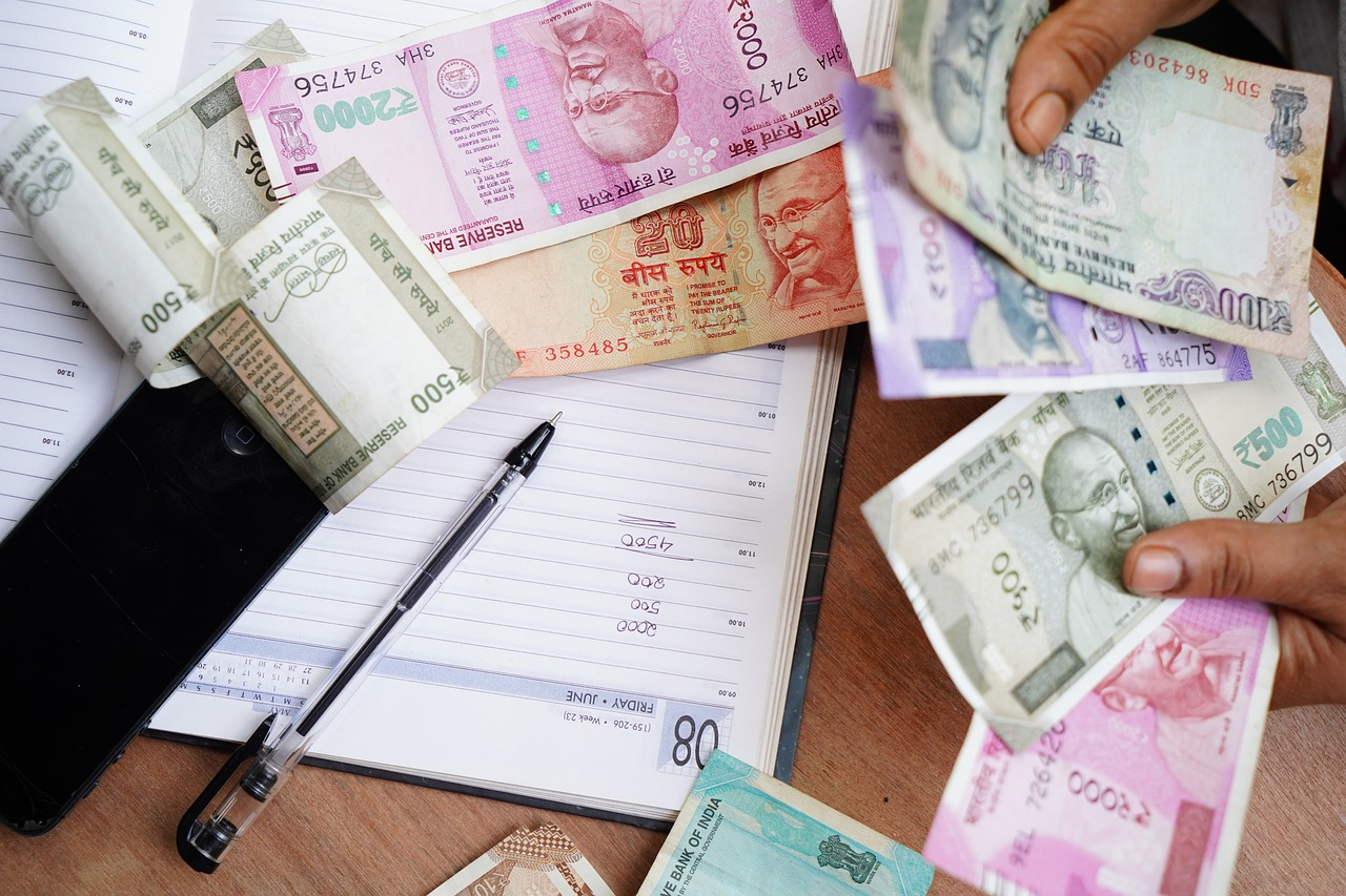 India Rupee Occupation  - shameersrk / Pixabay