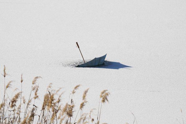 Umbrella Snow Reeds Ice Winter  - KIMDAEJEUNG / Pixabay